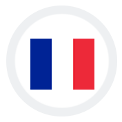 SEO Services in France
